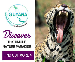 Guyana Tourism Authority