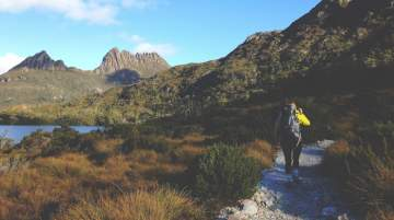 Tasmanian Visitor Survey conveyed a steady growth in the country's visitor numbers