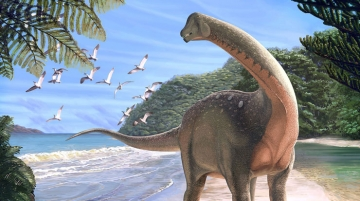 Researchers took 150 years longer to trace dinosaur evolution in Africa