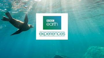 Holland America Teams-up with BBC Earth