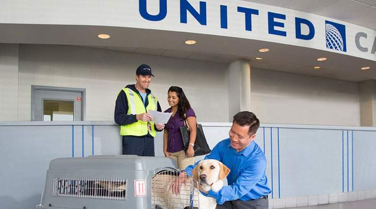 United Airlines and United Express operate approximately 4,600 flights a day to 354 airports