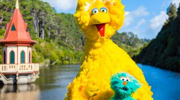 Big Bird and Rosita at Zealandia Eco-Santuary in Wellington